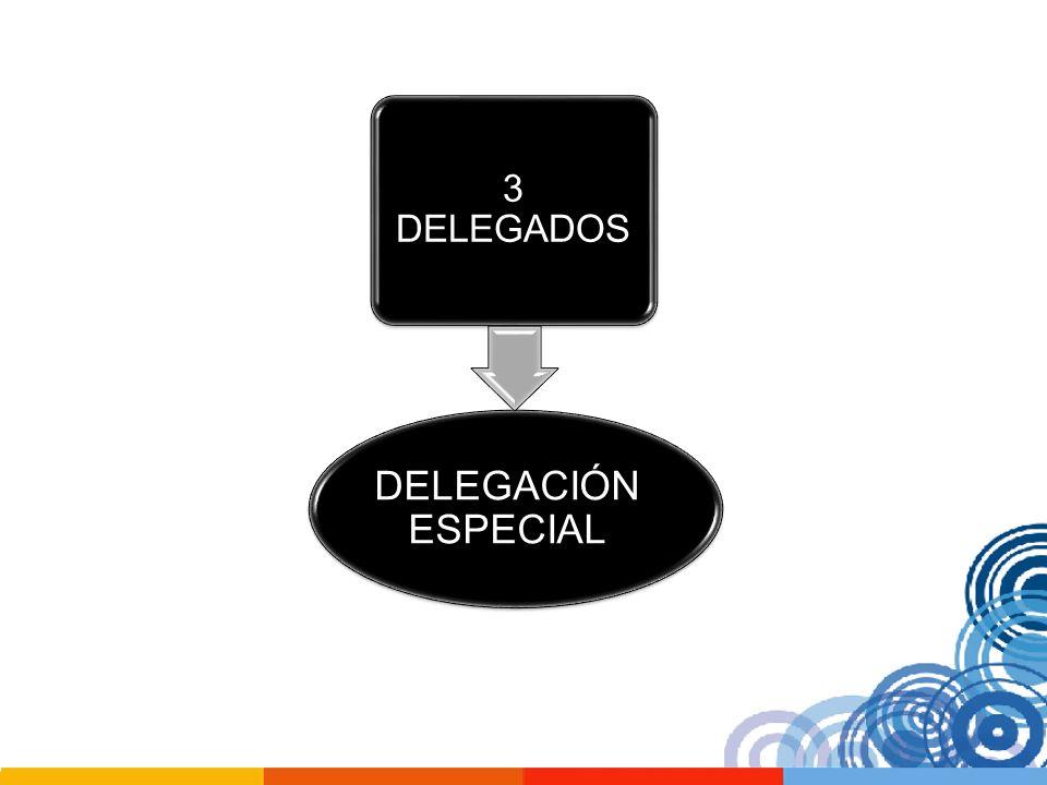 3 DELEGADOS DELEGACIÓN ESPECIAL