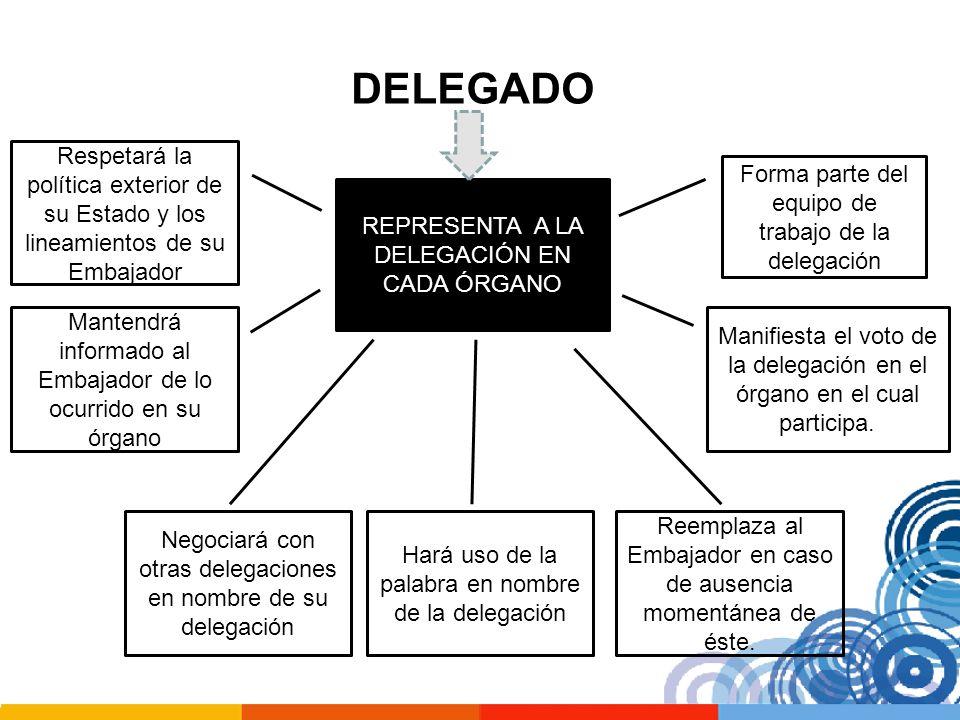 DELEGADO Respetará la política exterior de su Estado y los lineamientos de su Embajador. Forma parte del equipo de trabajo de la delegación.