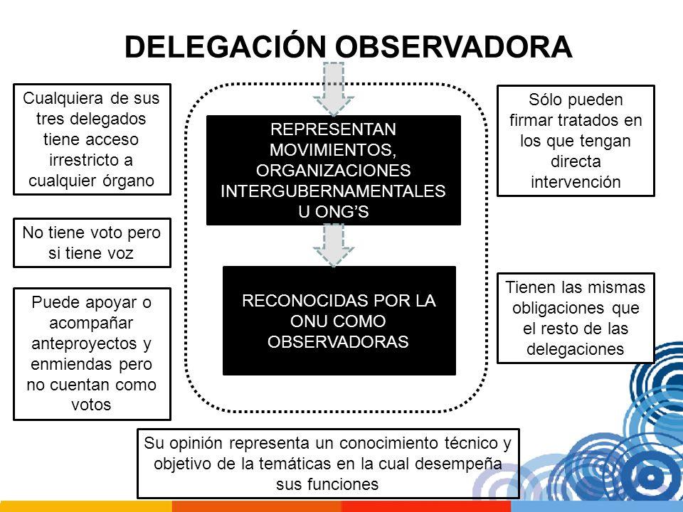 DELEGACIÓN OBSERVADORA