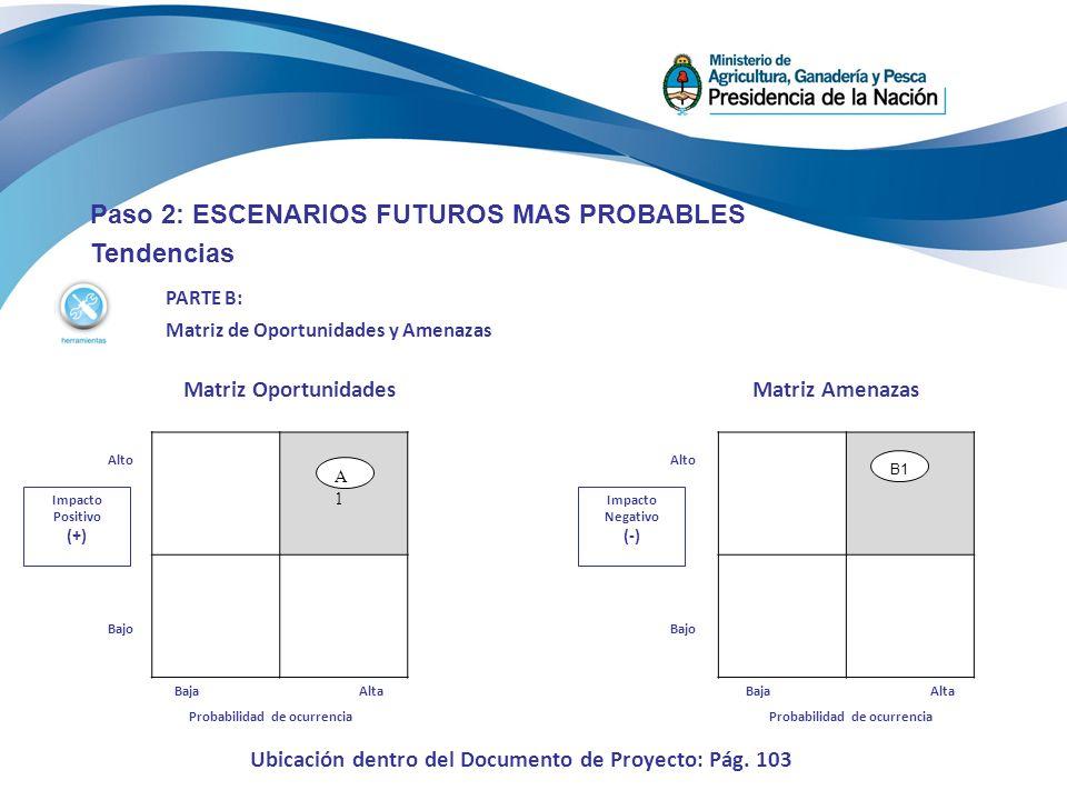 Paso 2: ESCENARIOS FUTUROS MAS PROBABLES Tendencias