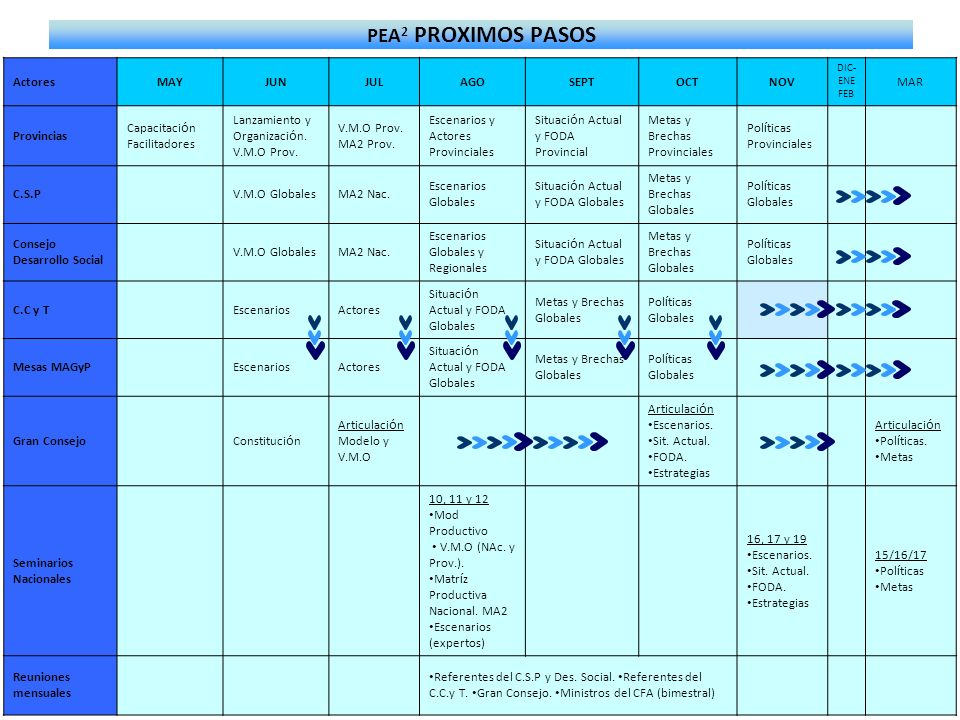PEA2 PROXIMOS PASOS Actores MAY JUN JUL AGO SEPT OCT NOV MAR