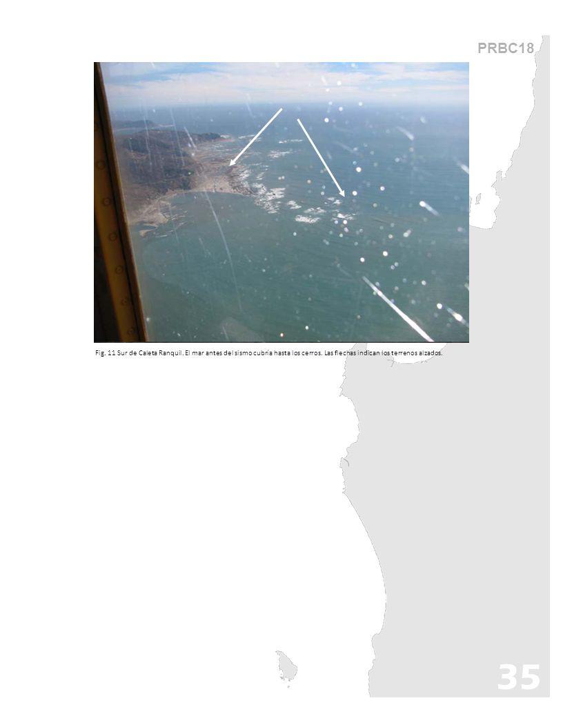 PRBC18 Fig. 11 Sur de Caleta Ranquil. El mar antes del sismo cubría hasta los cerros. Las flechas indican los terrenos alzados.