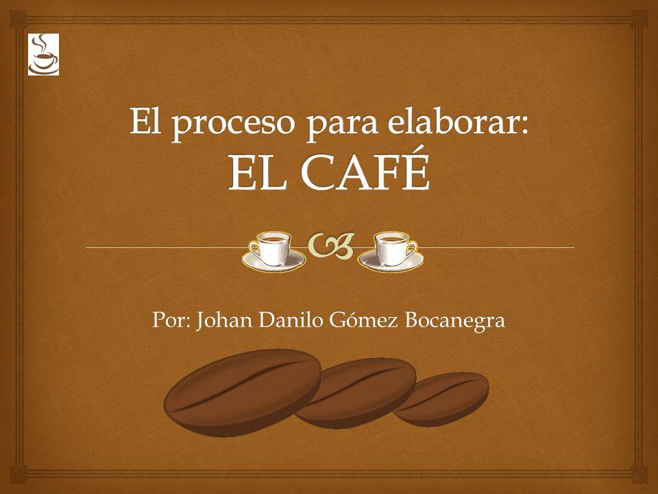 El proceso para elaborar: EL CAFÉ