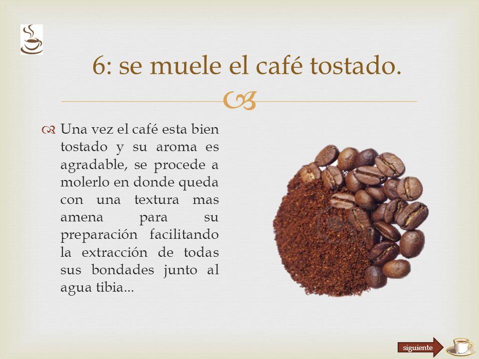 6: se muele el café tostado.