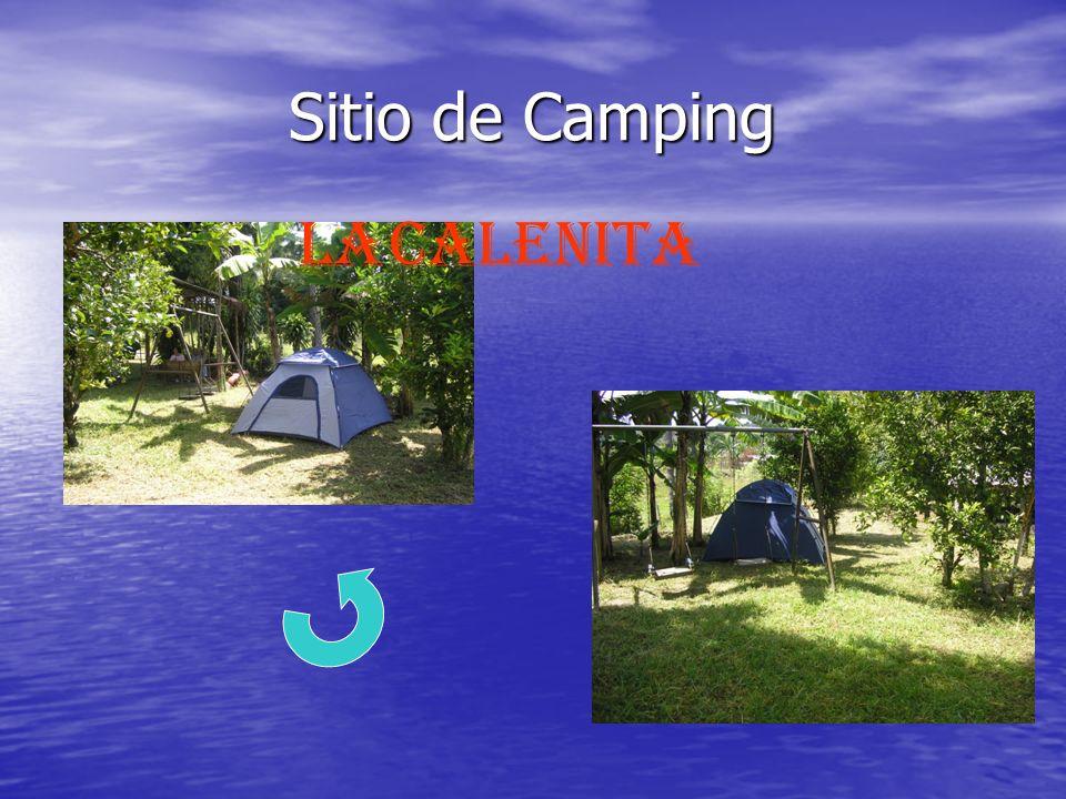 Sitio de Camping LA calenita