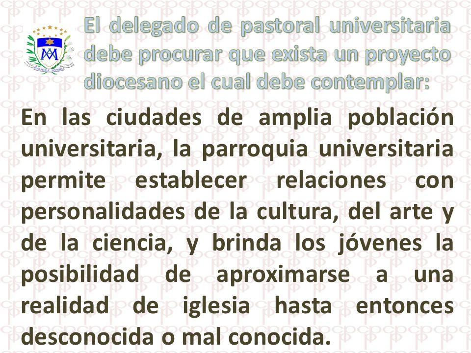 El delegado de pastoral universitaria debe procurar que exista un proyecto diocesano el cual debe contemplar: