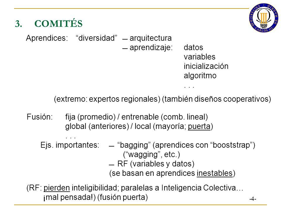 3. COMITÉS Aprendices: diversidad  arquitectura