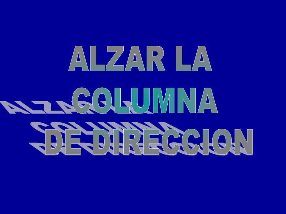 ALZAR LA COLUMNA DE DIRECCION