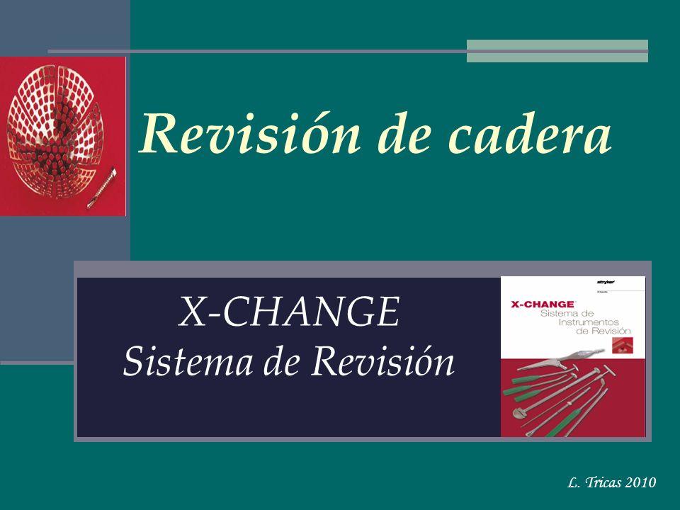 X-CHANGE Sistema de Revisión
