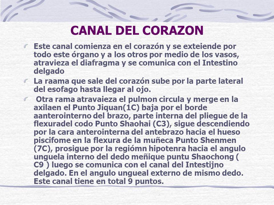 CANAL DEL CORAZON