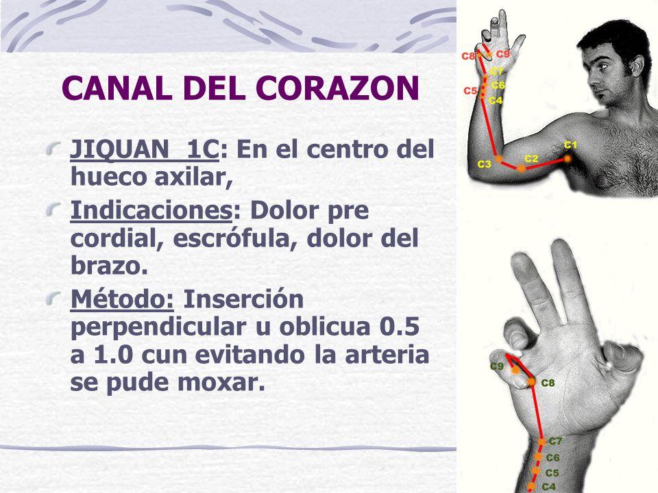 CANAL DEL CORAZON JIQUAN 1C: En el centro del hueco axilar,