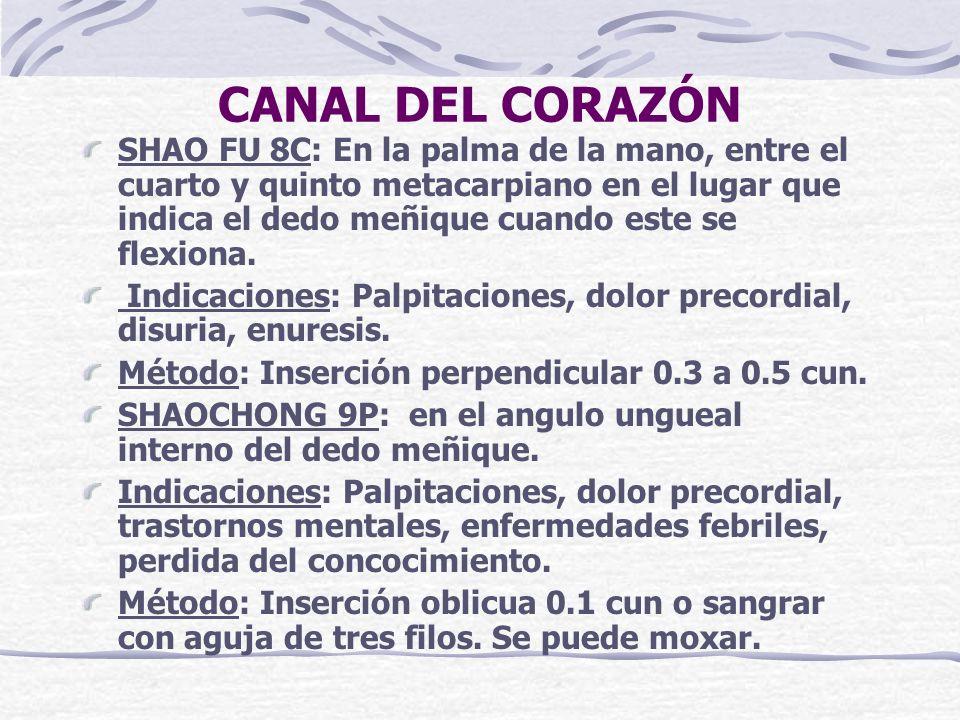 CANAL DEL CORAZÓN