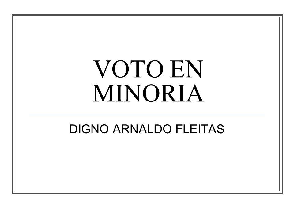 VOTO EN MINORIA DIGNO ARNALDO FLEITAS