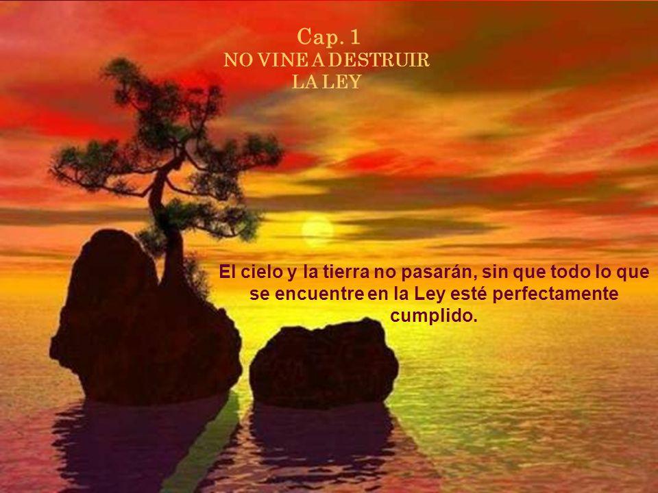 Cap. 1 NO VINE A DESTRUIR LA LEY