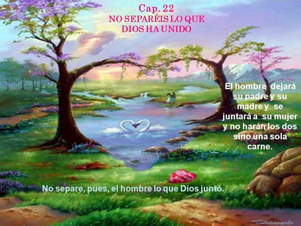 Cap. 22 NO SEPARÉIS LO QUE DIOS HA UNIDO