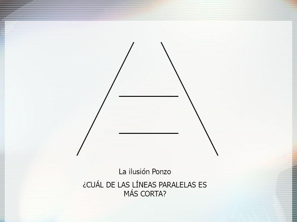 ¿CUÁL DE LAS LÍNEAS PARALELAS ES MÁS CORTA