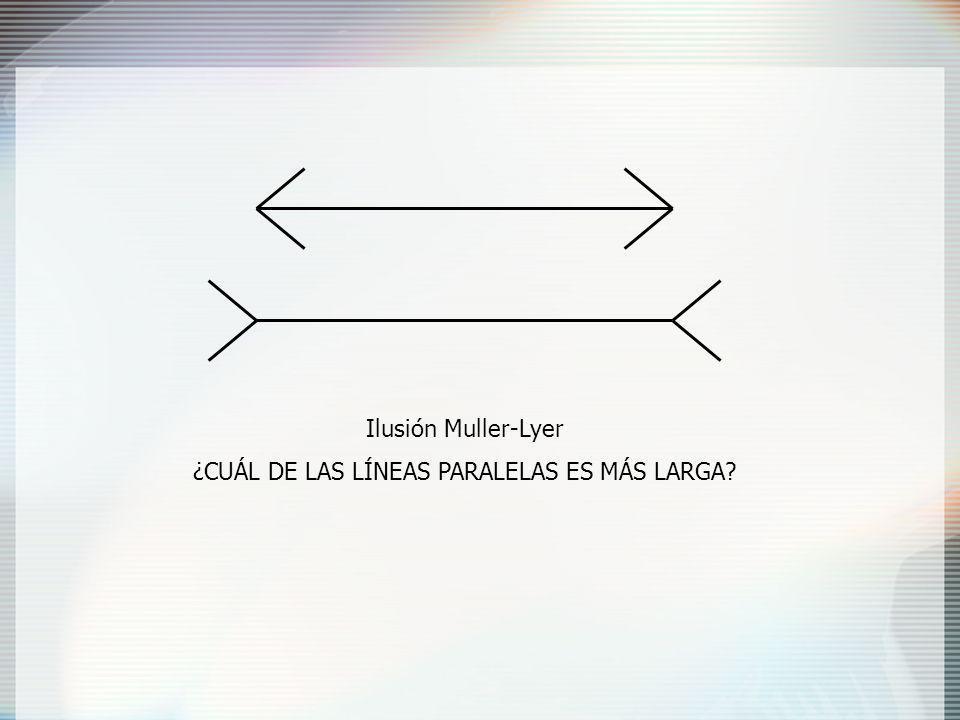 ¿CUÁL DE LAS LÍNEAS PARALELAS ES MÁS LARGA