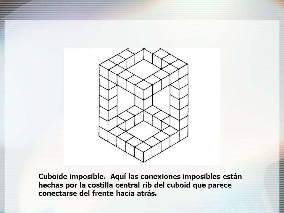 Cuboide imposible.