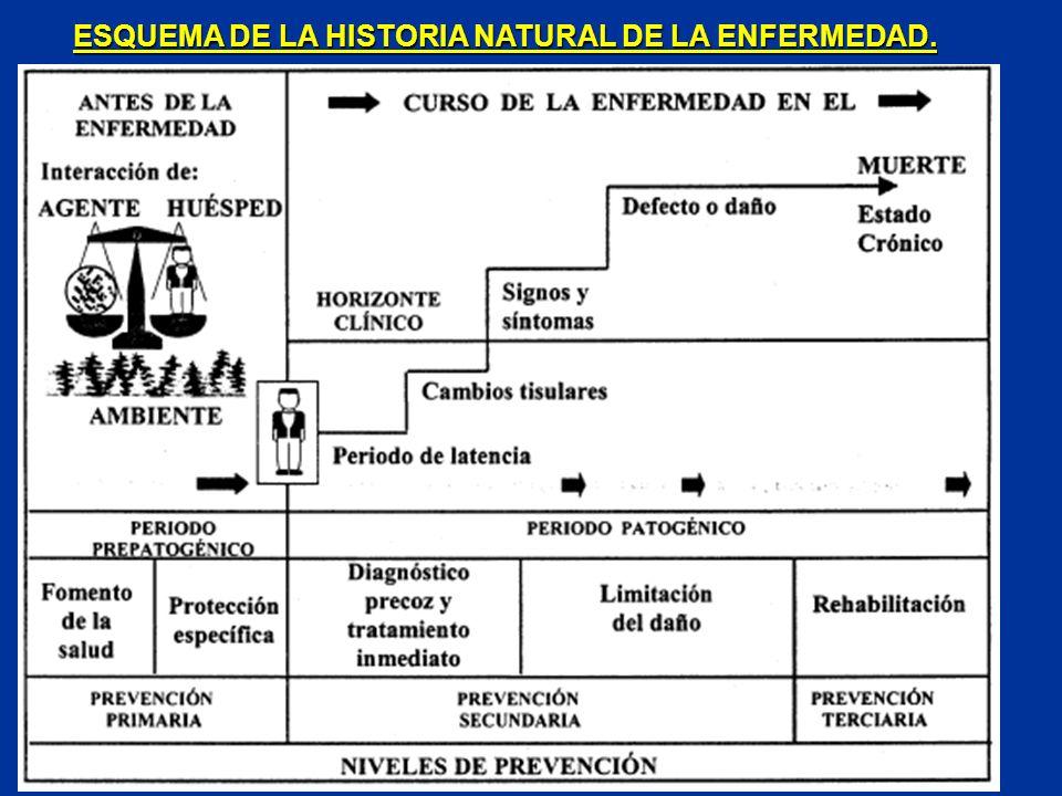 ESQUEMA DE LA HISTORIA NATURAL DE LA ENFERMEDAD.