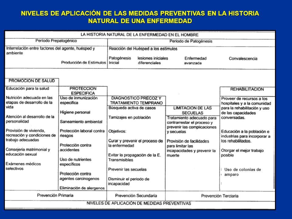 NIVELES DE APLICACIÓN DE LAS MEDIDAS PREVENTIVAS EN LA HISTORIA NATURAL DE UNA ENFERMEDAD