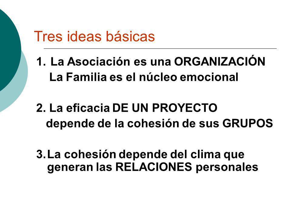 Tres ideas básicas 1. La Asociación es una ORGANIZACIÓN