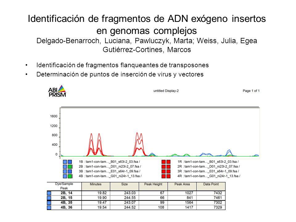 Identificación de fragmentos de ADN exógeno insertos en genomas complejos Delgado-Benarroch, Luciana, Pawluczyk, Marta; Weiss, Julia, Egea Gutiérrez-Cortines, Marcos