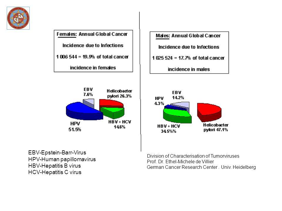 EBV-Epstein-Barr-Virus HPV-Human papillomavirus HBV-Hepatitis B virus