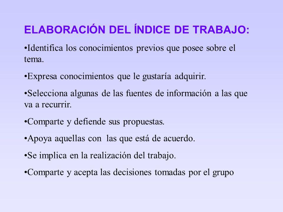 ELABORACIÓN DEL ÍNDICE DE TRABAJO: