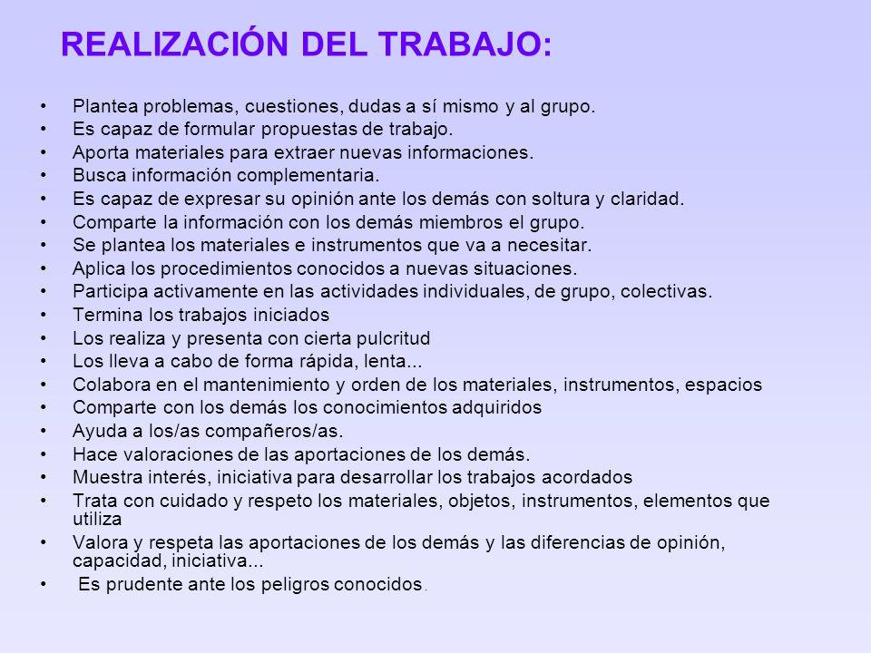 REALIZACIÓN DEL TRABAJO: