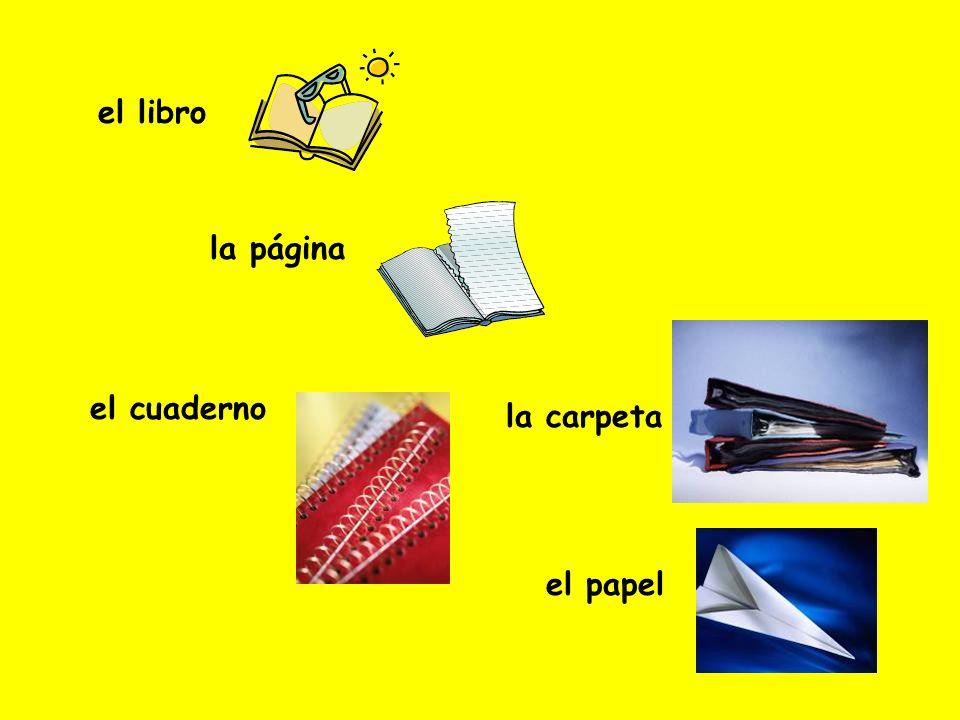 el libro la página el cuaderno la carpeta el papel