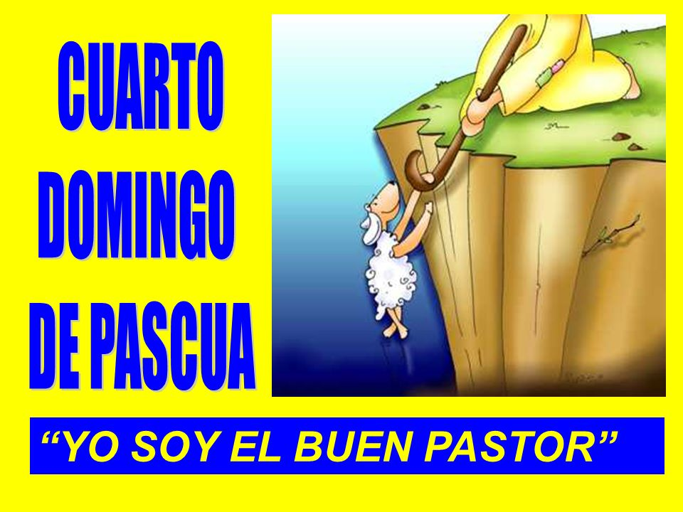 CUARTO DOMINGO DE PASCUA YO SOY EL BUEN PASTOR