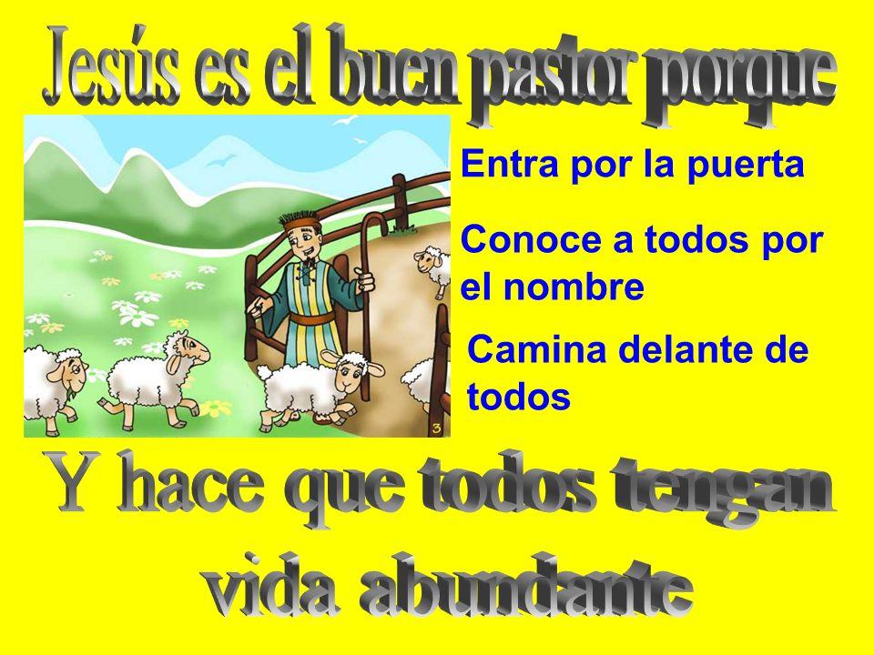 Jesús es el buen pastor porque