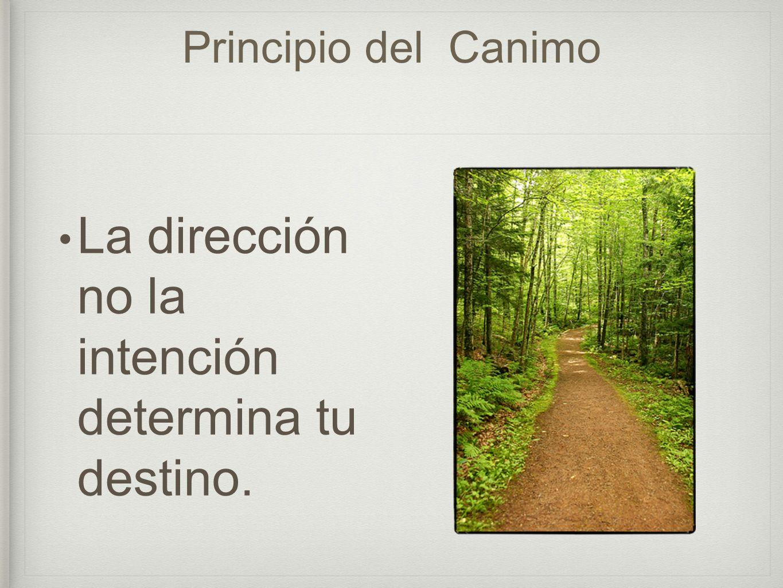 La dirección no la intención determina tu destino.
