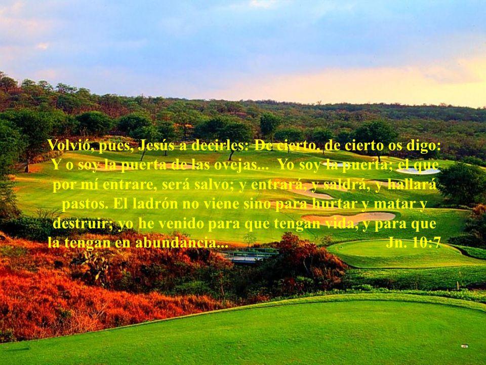 Volvió, pues, Jesús a decirles: De cierto, de cierto os digo: