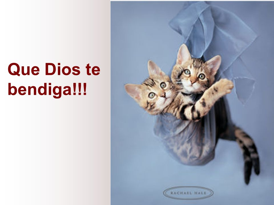 Que Dios te bendiga!!!