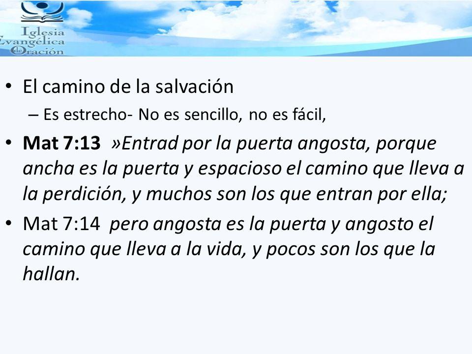 El camino de la salvación