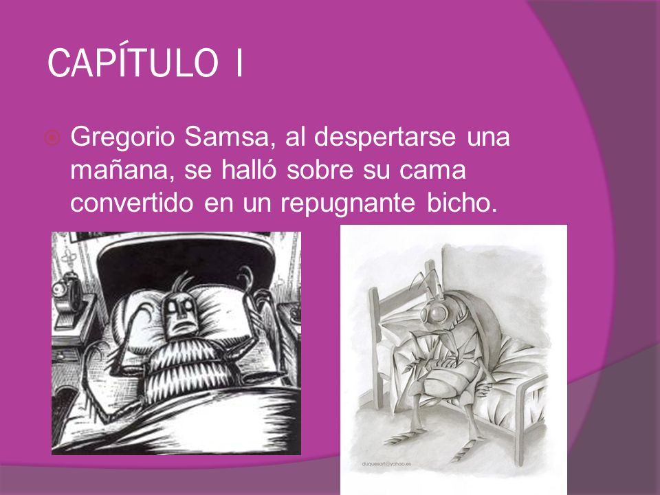 CAPÍTULO I Gregorio Samsa, al despertarse una mañana, se halló sobre su cama convertido en un repugnante bicho.