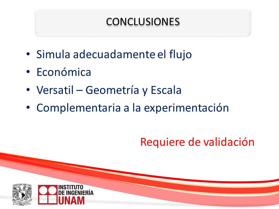 Simula adecuadamente el flujo Económica Versatil – Geometría y Escala
