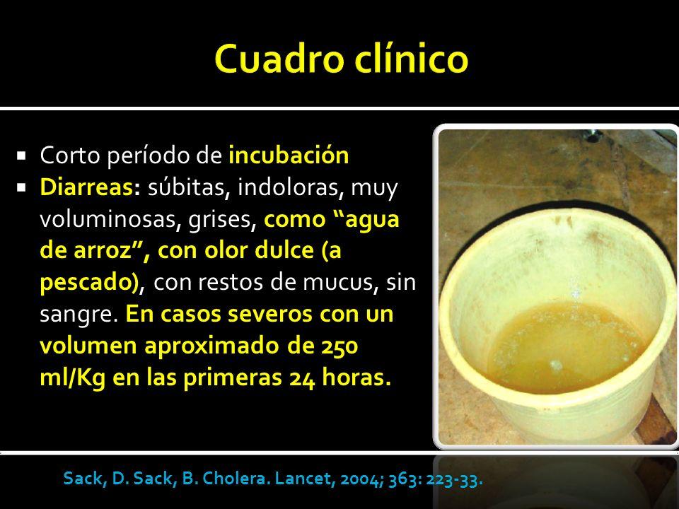 Cuadro clínico Corto período de incubación