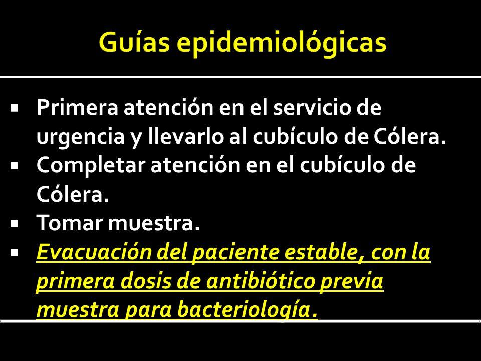 Guías epidemiológicas