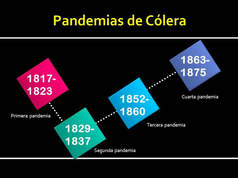 Pandemias de Cólera 1863- 1875 1817- 1823 1852- 1860 1829- 1837