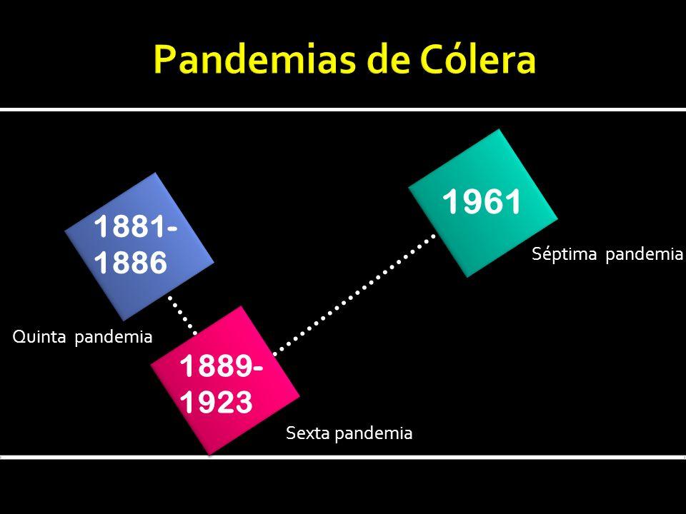 Pandemias de Cólera 1961 1881- 1886 1889- 1923 Séptima pandemia