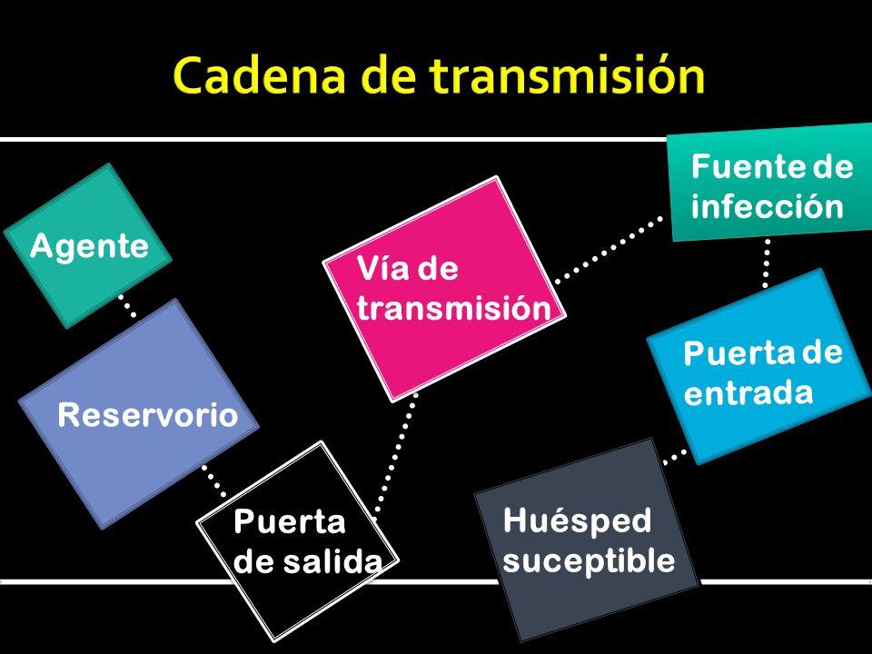 Cadena de transmisión Fuente de infección Agente Vía de transmisión