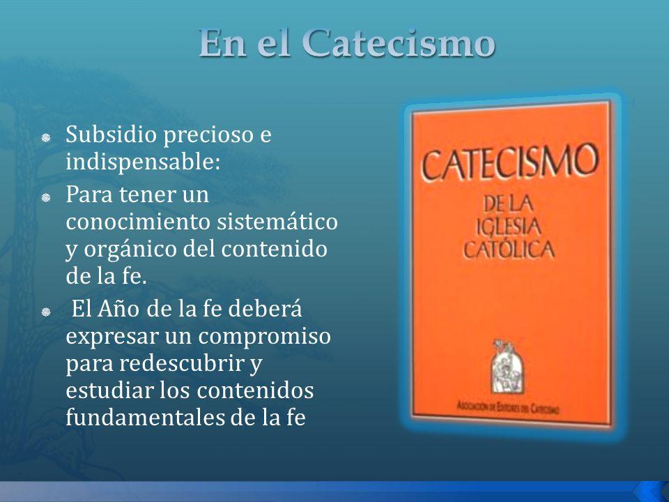 En el Catecismo Subsidio precioso e indispensable: