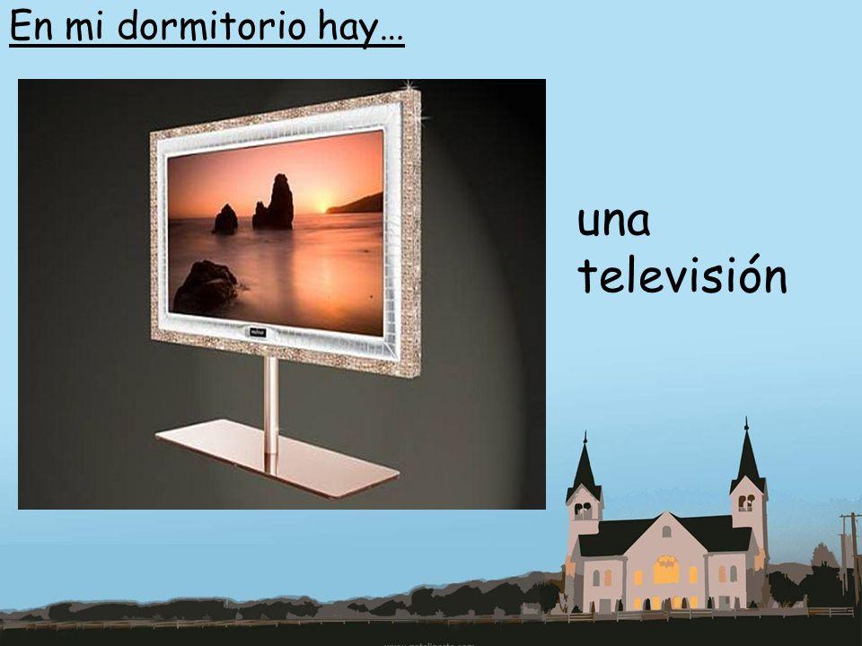 En mi dormitorio hay… una televisión