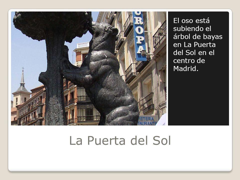 El oso está subiendo el árbol de bayas en La Puerta del Sol en el centro de Madrid.
