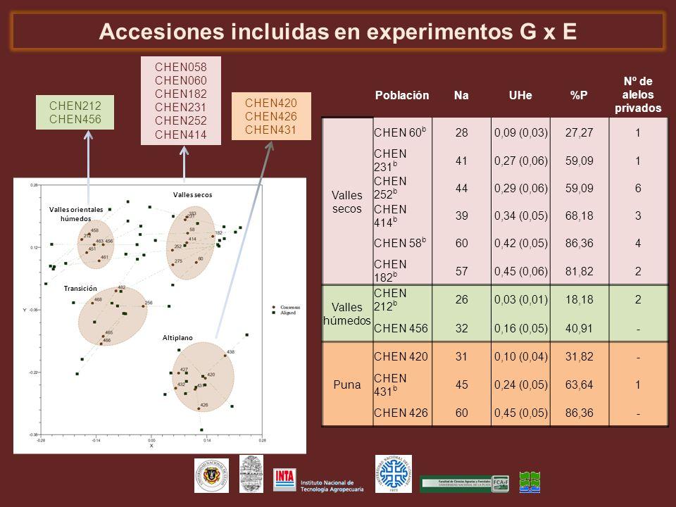 Accesiones incluidas en experimentos G x E