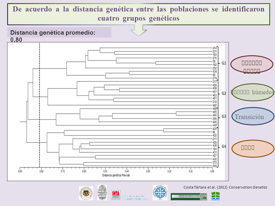 De acuerdo a la distancia genética entre las poblaciones se identificaron cuatro grupos genéticos