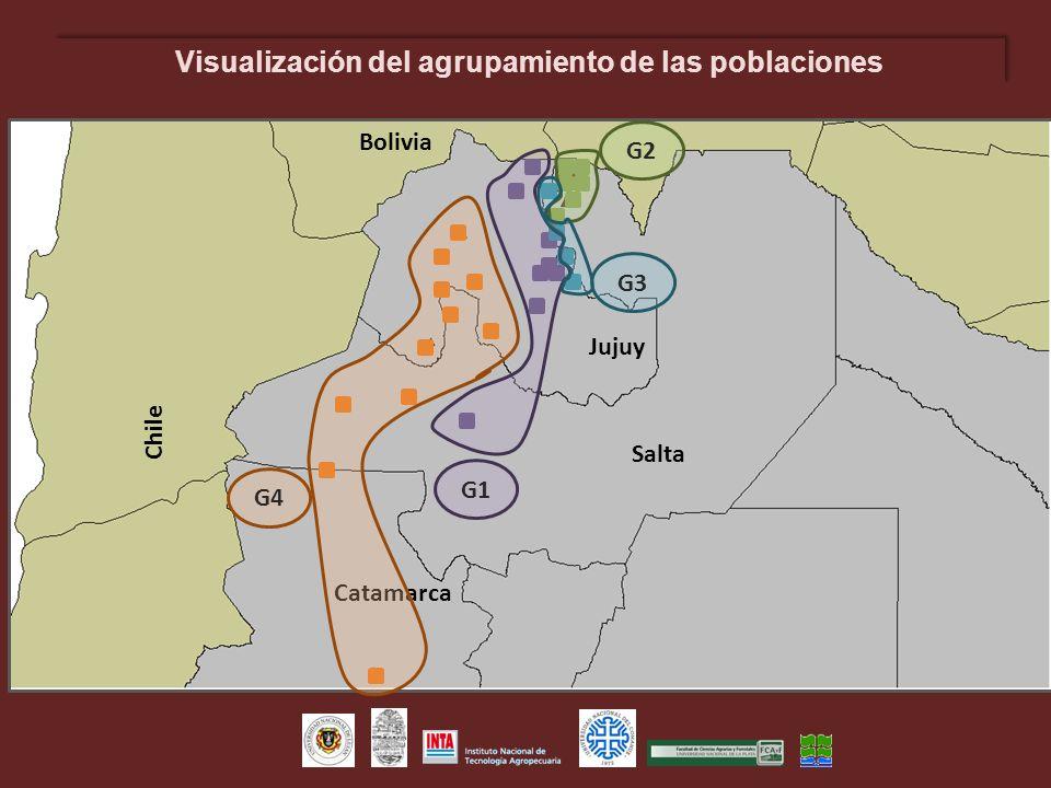 Visualización del agrupamiento de las poblaciones