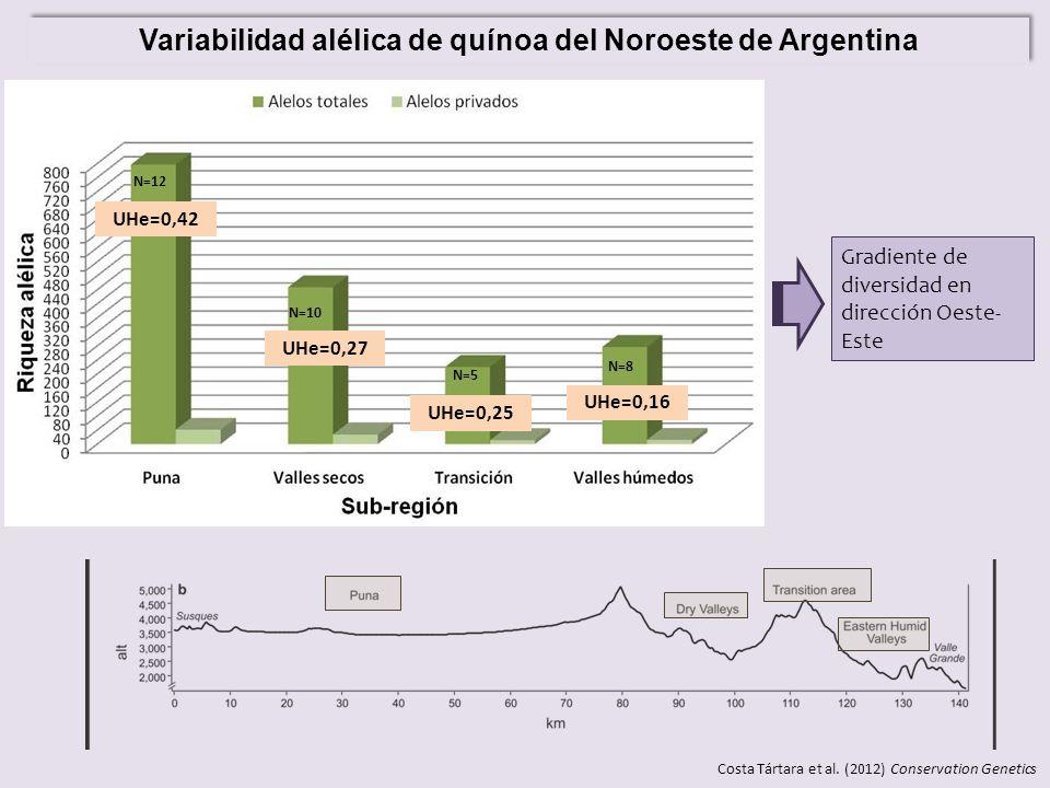 Variabilidad alélica de quínoa del Noroeste de Argentina